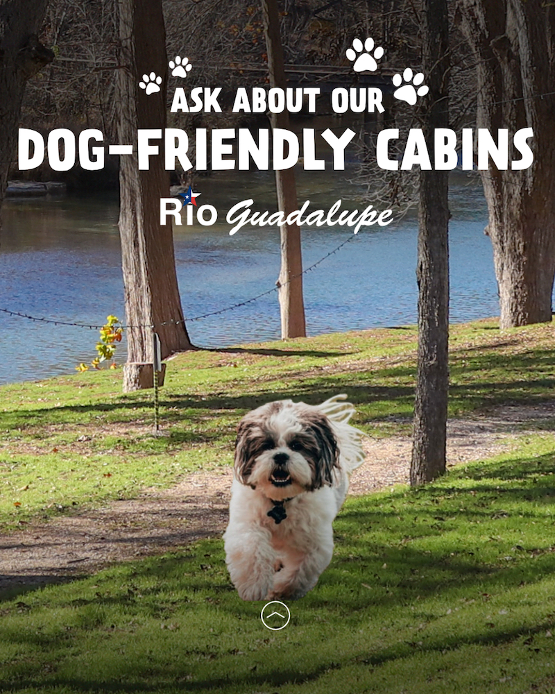 Guadalupe River Dog Friendly Cabins